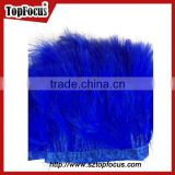 costume designing or dress with trimming blue ribbon turkey marabou feather