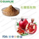 Pomegranate bark extract powder,Pomegranate peel extract,Pomegranate bark extract Ellagic Acid 70% powder HPLC manufactures