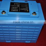 INQUIRY about 12V100Ah deep cycle lithium ion battery