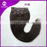 Clip in Hair Extensions Hot Sell Clip in Straight Hair Brazilian Virgin Clip in Hair Extensions Full Head Set Remy Hair