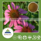 HOT SALES! herbal extract echinacea purpurea, echinacea purpurea root extract, echinacea purpurea p.e.