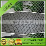 2015 hot sale of high quality and low price of invisible bird capture net product