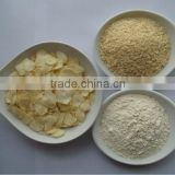 Premium quality new dehydrated garlic granules