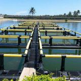 Wind And Wave Resistance Anti-wind Aquaculture Cage System