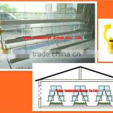 TAIYU-5 3 tier-A type egg laying chicken cage (With feeding system,drinking system-nipple drinker)
