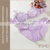 Factory price cheap ladies sexy net bra sets hot sale underwear