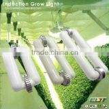 latest design magnetic induction lamps item type and cree led grow light