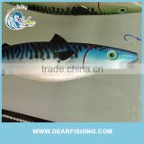 Ce,Rosh,Eco-Friendly Free Sample Plastic Lures For Shad Fishing