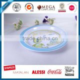 melamine ware square plate, english style