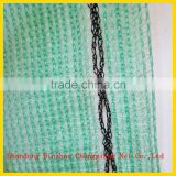 Chinese cheap price Plastic Net Mesh HDPE Building Safety Net
