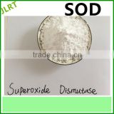 Pure Natural Herbal extracts Superoxide Dismutase Power/SOD make up cosmetics