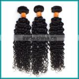 Most Popular Wholesale Price Virgin Indian Remy Weave Human Hair Indian Kinky Curly Hair Extensions
