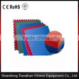 cheap rubber gym flooring/ muscle building equipment /Commercial gym equipment /Gym Floor Covers /Rubber Floor TZ-3031