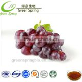 Grape skin extract powder