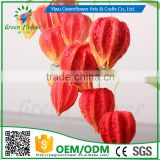 Greenflower 2016 Wholesale Real Touch Latex PU Lantern fruit China Artificial Flowers Rose for wedding decoration