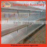 Poultry H type battery broiler chicken cages with PP belt and manure removal system