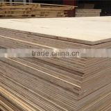 The container excellent melamine veneer 19mm block board with competitive price and quality