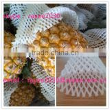 EPE fruit Foam Sleeve , Pineapple Packing Mesh , foam roller sleeve , net espuma