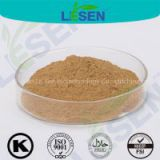 Hot Selling Incarvillea Sinensis Extract Powder