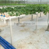 PVC Hydroponic Channels 120mmx80mm for greenhouse
