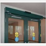 Best sale Automatic Swing door DSW85
