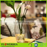 different shape cheap tall clear glass flower vases for centerpieces and flower arrangements