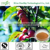 Hawthorn berry extract powder bodybuilding supplements