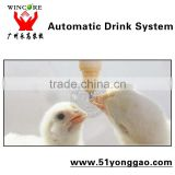 Automatic poultry farm equipment chicken Drinking system Broiler drinker poultry farming equipment automatic drinking system