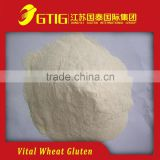 Factory price Vital Wheat Gluten food grade77.5%