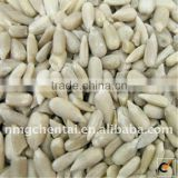 Sunflower seed kernels for Oil Producers