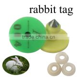 Ear tag for rabbit