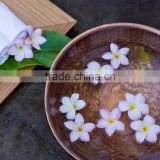 Copper Natural Herbal Pedicure Bowl With Hammered Finish