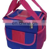 Multi Color Cooler Carry Bag Beach Bag