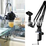Professional Microphone Stand, Flodable Mic Stand Mic Arm Suspension Boom Scissor Arm Stand for Radio Broadcasting Studio