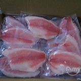 Frozen Tilapia Fillets at very low prices