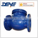 Brass or Bronze Seal GG25 Swing Check Valve with PN10 PN16 Pressure