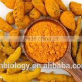 100% Natural Curcumin Extract(30-95% Curcuminoids) Best Selling Product Curcumin/Price Curcumin/Curcumin Extract