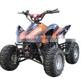 1000W Four Wheel Quad Electric ATV