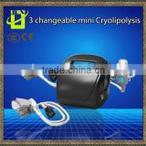 3 handles cryotherapy criolipolise cryolipolysis head fat reduction freezefats system weight loss