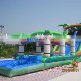 High quality and cheap coconut palm water slide with pool WS049