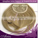 100% High Temperature Fiber Synthetic Hair Incline Bangs Clips in Hair extensions