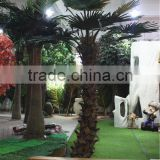 Home garden decoration 100cm to 1000cm Height artificial indoor live plastic ficus red with green big palm tree EZLS05 1016
