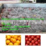 vegetable washing machine/Factory fruit bubble washing machine