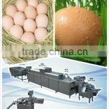 chicken farm equipment stainless 3000pcs/h egg breaker/cracker machine for 008613823737025