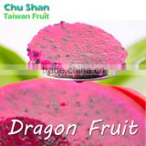 2016 Taiwan Fresh Dragon fruit