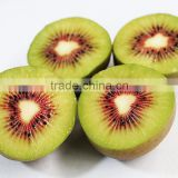 Fresh red kiwi fruit