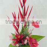 High quality Anthuriums plants for sale/wholesale artificial flower for home decoration