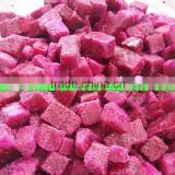 2015 Hot selling iqf organic dragon fruit