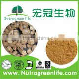 Great Burdock Achene Extract