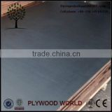 Wire Mesh Laminated Anti slip Film Faced Plywood/ 21mm film faced plywood shuttering panel